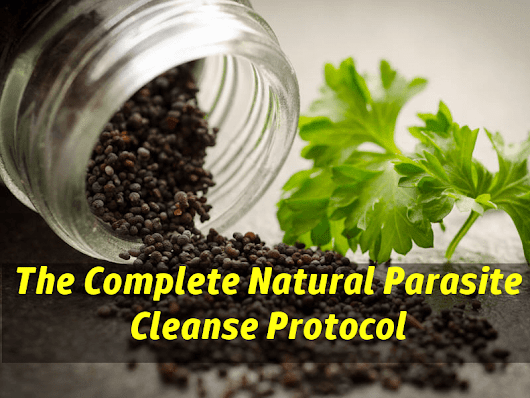 Parasite Cleanse Natural Protocol - Get Rid of Parasites in Humans Safely