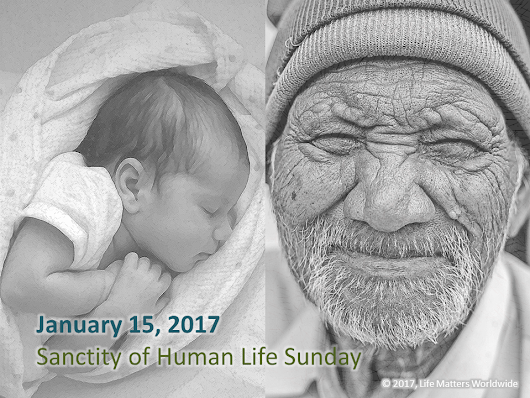 Promoting Sanctity of Human Life Sunday > Life Matters Worldwide | Biblical Pro-Life Ministries that Change Lives
