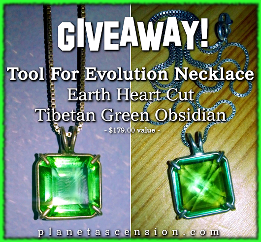 Giveaway! Tool for Evolution Necklace