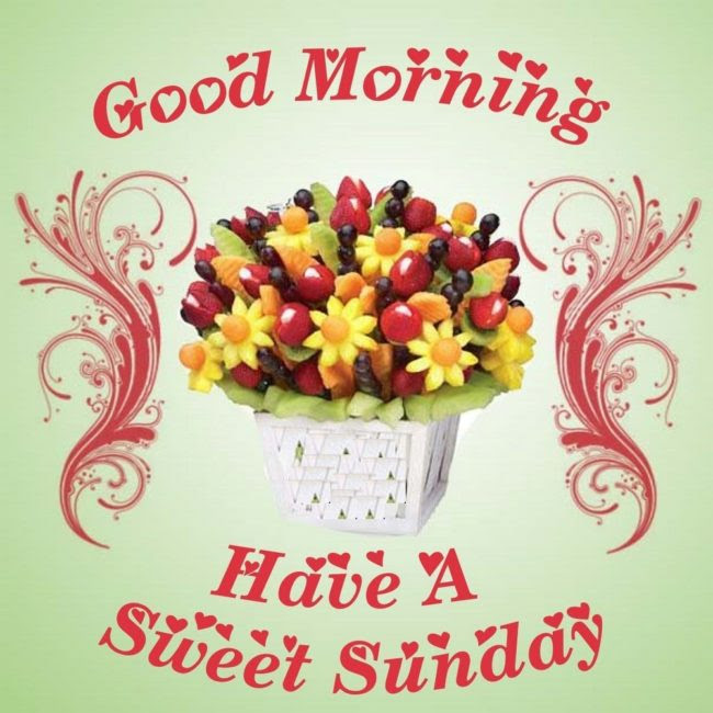 Good Morning Happy Sunday Full Hd Image Download Gadget And Pc