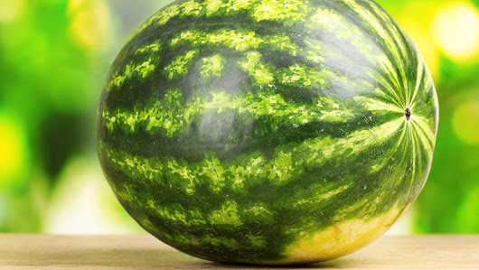 How to Know if a Watermelon is Ready for Harvest