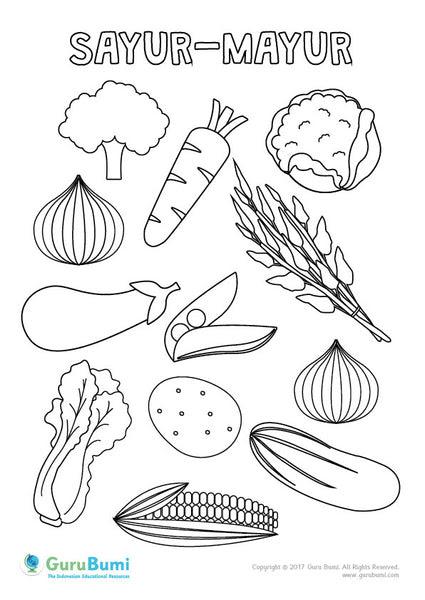 Mewarnai Sayur Mayur Guru Bumi