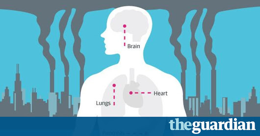 How air pollution affects your health - infographic | Guardian Sustainable Business | The Guardian