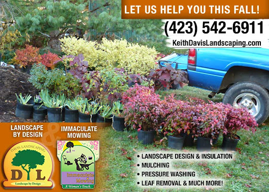 Is Fall A Good Time To Plant Trees And Shrubs? - Keith Davis Landscaping