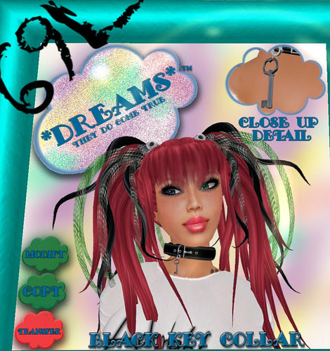69L Dreams collars on December 9 2009 001