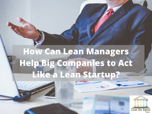 How Lean Managers Can Help Big Companies to Act Like a Lean Startup - Lean Six Sigma Belgium