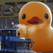 World's Biggest Rubber Duck Makes American Debut In Pittsburgh - DesignTAXI.com