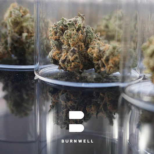 Say Hello To Burnwell Cannabis Co!