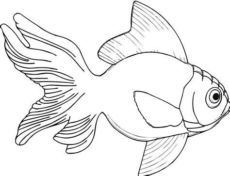 fish clipart png  cliparts