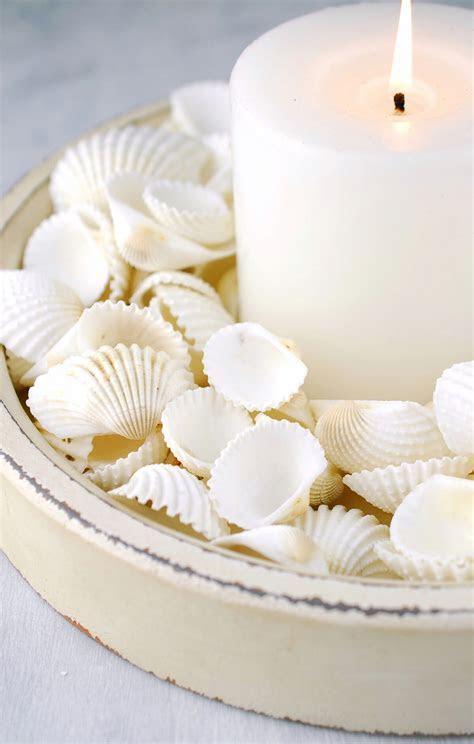 White Clam Shells 3 lb.