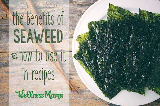The Benefits of Seaweed (And When To Avoid It) | Wellness Mama