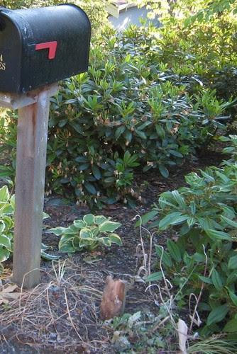 mailbox torn down