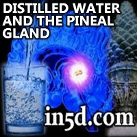 http://www.in5d.com/images/pineal-water.jpg