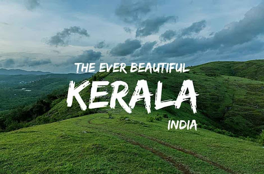 Top 6 Tourist Places in Kerala!