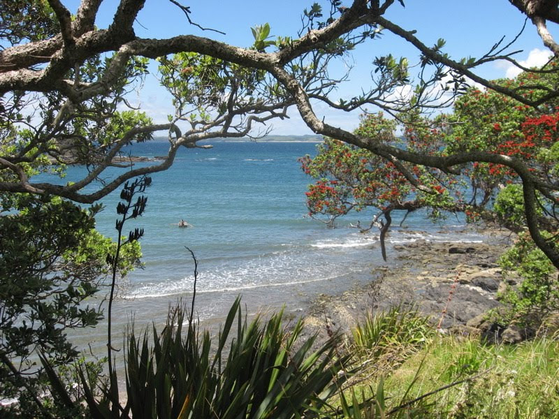 Matheson Bay