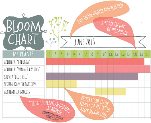 A Bloom Chart for You