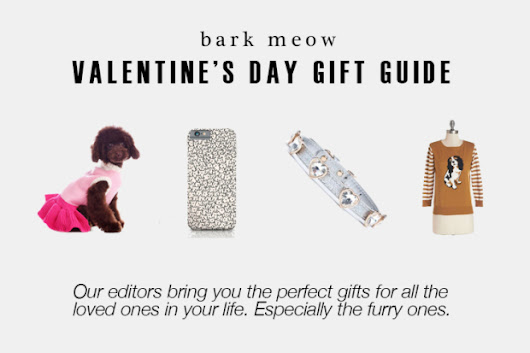 Valentine's Day Gift Guide 2015 | Bark Meow