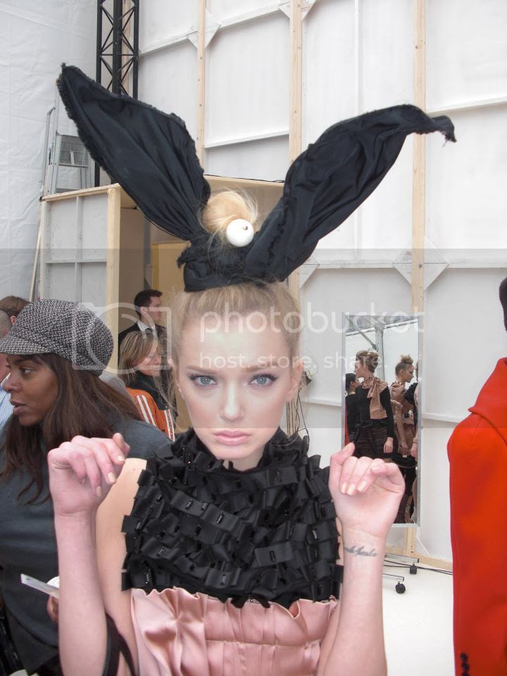 photo lily-rabbitears_zpsa3be44d2.jpg