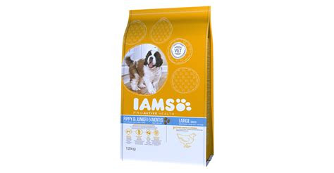iams proactive health puppy junior large breed rich