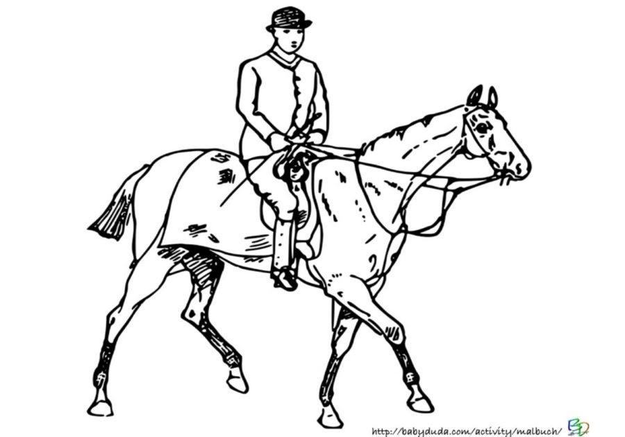 pferde bilder zum ausmalen mit reiter