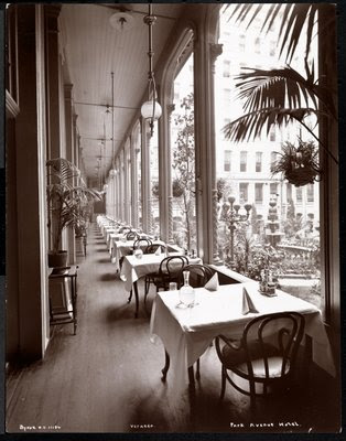 Fine Art Print of The veranda at the Park Avenue Hotel, 1901 or 1902 by Byron Company