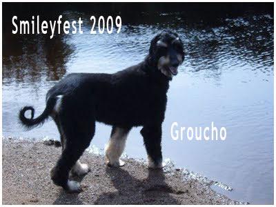 65-Groucho---3