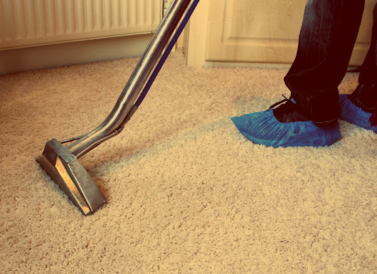 Steam Carpet Cleaning Services in Auckland NZ