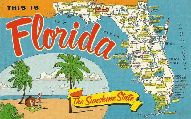 How to Think Outside the Box When Planning a Trip to Florida