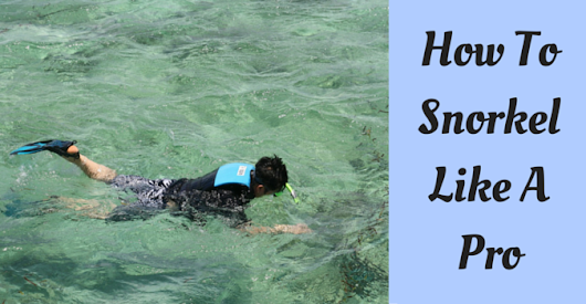Learn How To Snorkel Like A Pro Today!