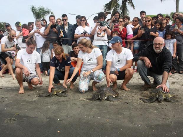 Tartarugas foram pescadas e entregues ao projeto por pescadores. (Foto: Divulgação/Projeto Tamar)