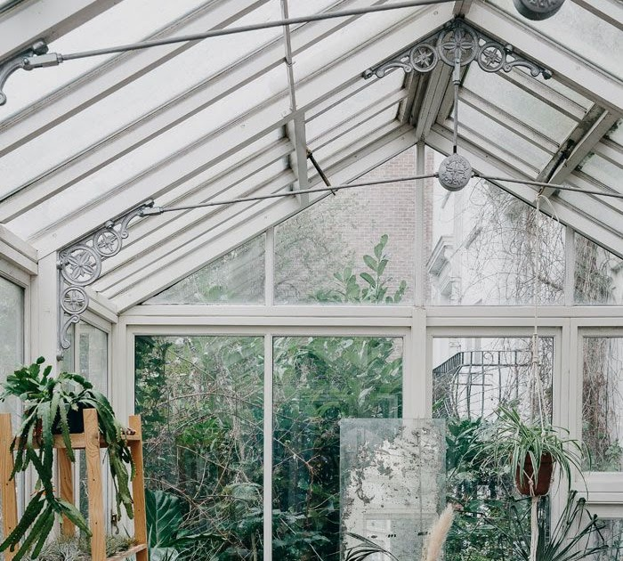 DECORATING IDEAS: How To Look After Your Plants