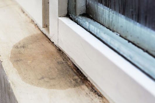 How to Check for Water Damage in Your Basement