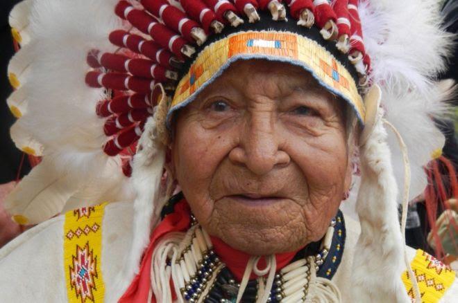 Chief David Bald Eagle