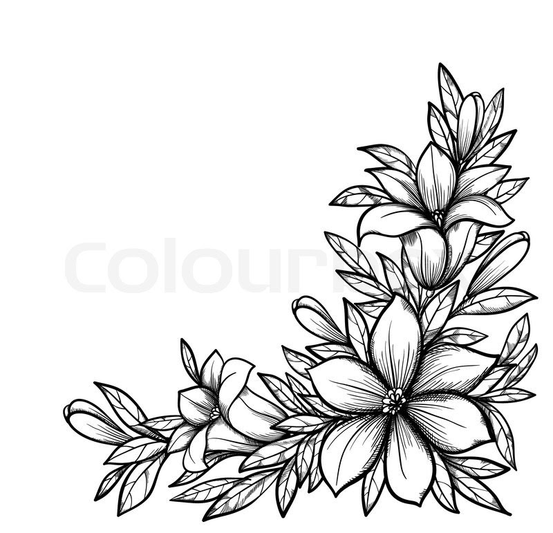 Black And White Drawing Of Flowers At Getdrawingscom Free For
