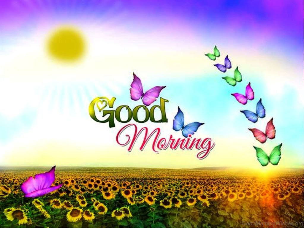 30 Good Morning Quotes Wishes