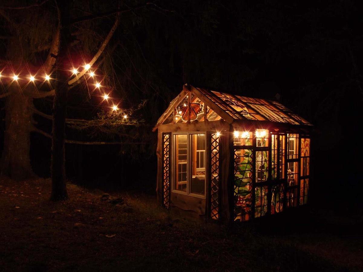 Uma cabana de vidro no meio da floresta 07