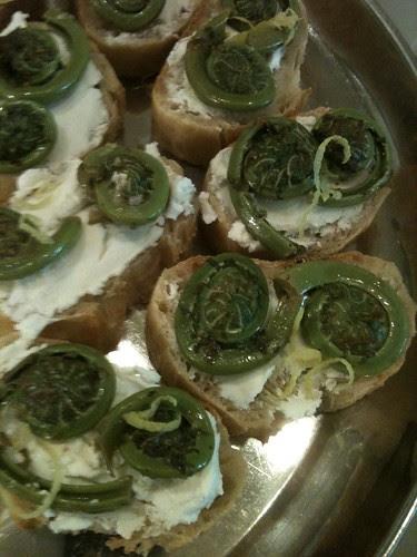 Fiddlehead Sandwiches