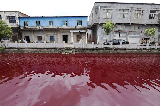 Chinese River Turns Blood Red Overnight from River Turns Blood Red Overnight