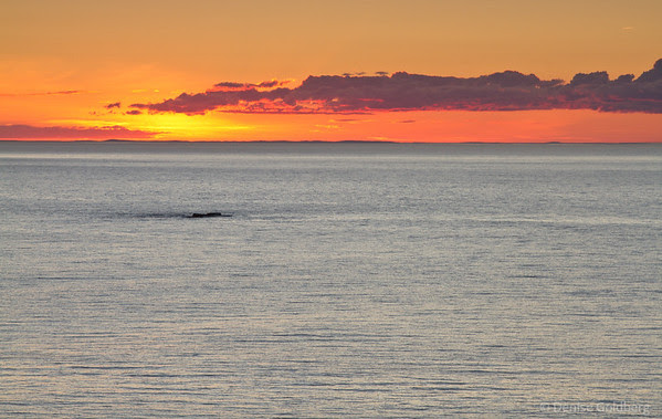 sunset, Cape Bonavista, Newfoundland