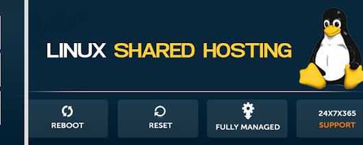 Web Hosting Company Delhi - Linux Shared Web Hosting, Linux Shared Hosting Company, Delhi