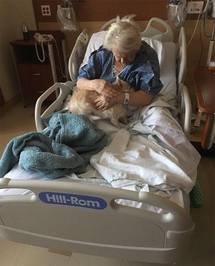 girl-smuggles-grandmother-dog-hospital-patsy-shelby-hennick-1