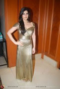 Zarine Khan in Hot Pics