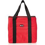 "BGDV-12 12"" x 12"" Pizza Delivery Bag - Red"