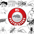 Commercial Pest Control Service For Hotels and Restaurants in West Midlands UK | Pestbusters
