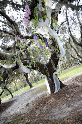 Wedding, wedding ceremony, tree, wedding tree, wedding