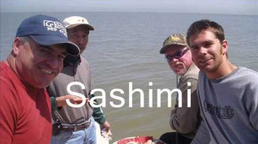Armand castagna google for San francisco bay fishing charters