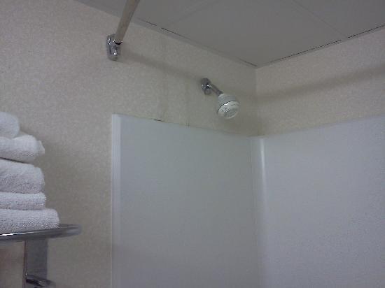 Bathroom Drop Ceiling Tiles images