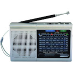 Supersonic SLV 9-Band Rechargeable Bluetooth Radio with USB/SD Card Input, Silver