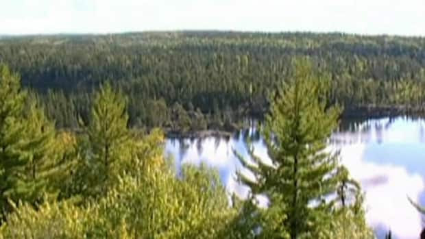 Scientists say their research will be hampered after the federal government announced it is shutting down a series of lakes in northern Ontario used as giant laboratories