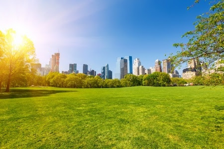Are green spaces happy places?